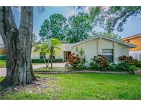 View 3928 Orchard Hill Cir Palm Harbor FL