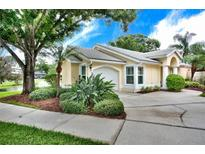 View 1106 Dartmouth Ter Safety Harbor FL