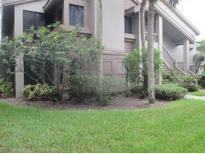View 3017 Landmark Blvd # 501 Palm Harbor FL