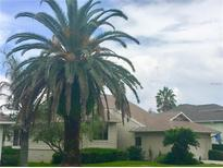 View 1012 Teal Tarpon Springs FL
