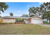 View 1505 Indiana Ave Palm Harbor FL