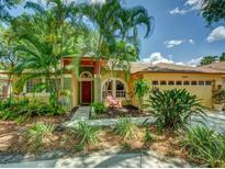 View 2955 Jodi Ln Palm Harbor FL