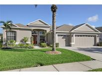 View 1631 African Violet Ct Trinity FL