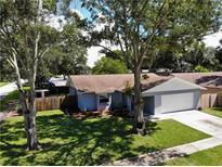 View 1343 Homestead Dr Palm Harbor FL