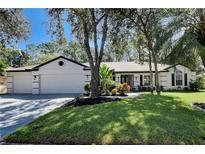 View 4740 Brayton Ter S Palm Harbor FL