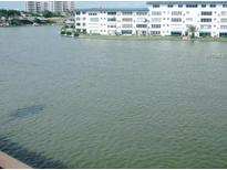 View 6025 Shore Blvd # 410 Gulfport FL
