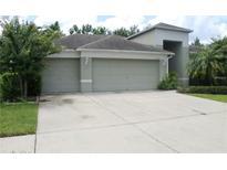 View 8207 Pinewood Run Ct Tampa FL