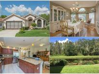 View 9809 Conservation Dr New Port Richey FL