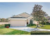 View 10003 Brookdale Dr New Port Richey FL
