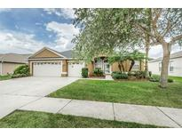 View 1546 African Violet Ct Trinity FL