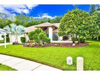 View 3342 Wedgewood Way Tarpon Springs FL