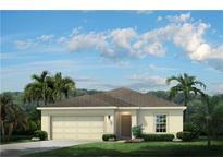View 14454 Haddon Mist Dr Wimauma FL