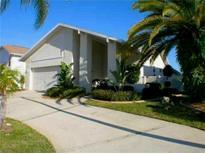View 6328 Spoonbill Dr New Port Richey FL