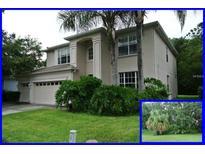 View 2721 Beech Grove Ln Wesley Chapel FL