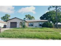 View 10954 Peppertree Ln Port Richey FL