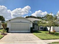 View 11933 Loblolly Pine Dr New Port Richey FL