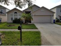 View 10409 Fly Fishing St Riverview FL
