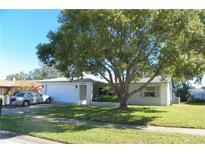 View 10908 Peppertree Ln Port Richey FL