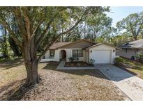 View 15937 Winding Dr Tampa FL