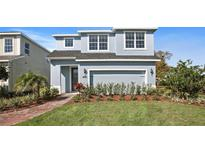 View 11126 Abaco Island Ave Riverview FL