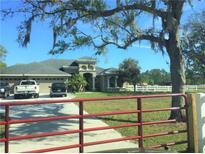 View 12637 Tyler Run Ave Odessa FL