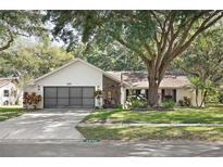 View 8637 White Springs Dr New Port Richey FL