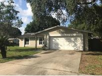 View 15929 Crying Wind Dr Tampa FL