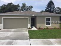 View 10113 Candleberry Woods Ln Gibsonton FL