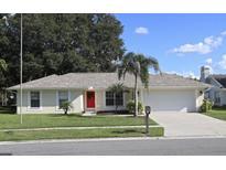 View 10404 Ashley Oaks Dr Riverview FL