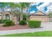 View 15124 Princewood Ln Land O Lakes FL