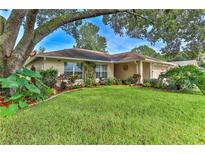 View 1432 Windmill Pointe Rd Palm Harbor FL